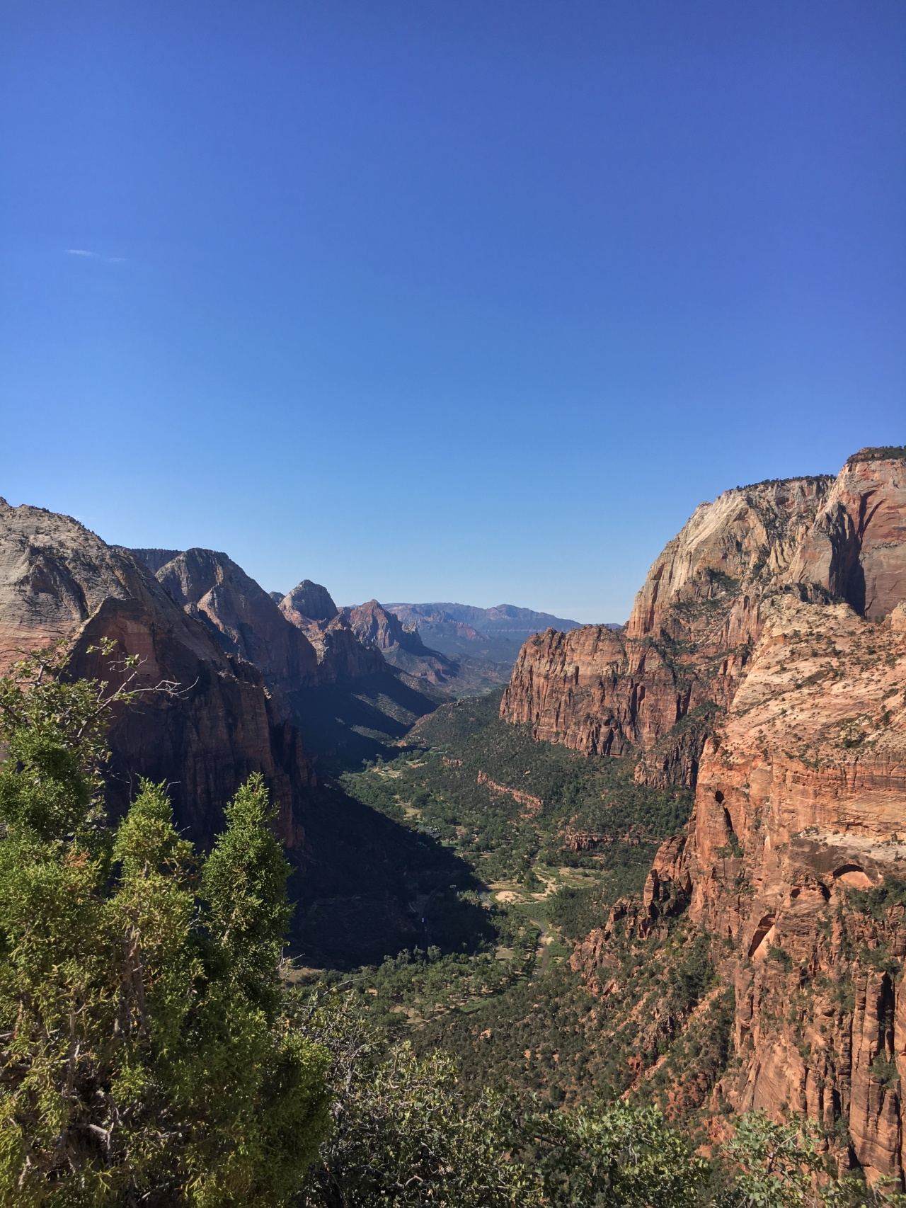 Utah- Zion National Park