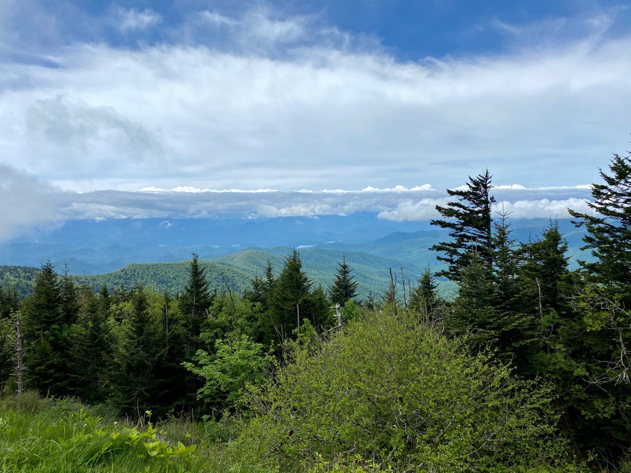 A hiking paradise close to home, the Great Smoky Mountains
