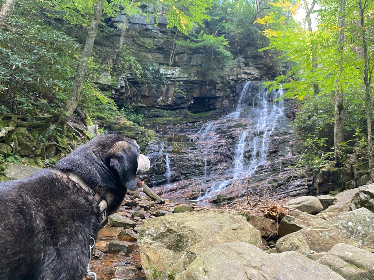 Day hike in Cherokee NationalForest